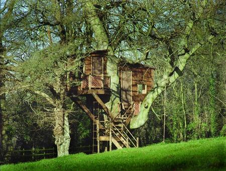 Frank gehry s creative process how he comes up with among for Free treehouse plans